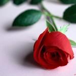 Fuga Romantica - 1 notte, 2 giorni
